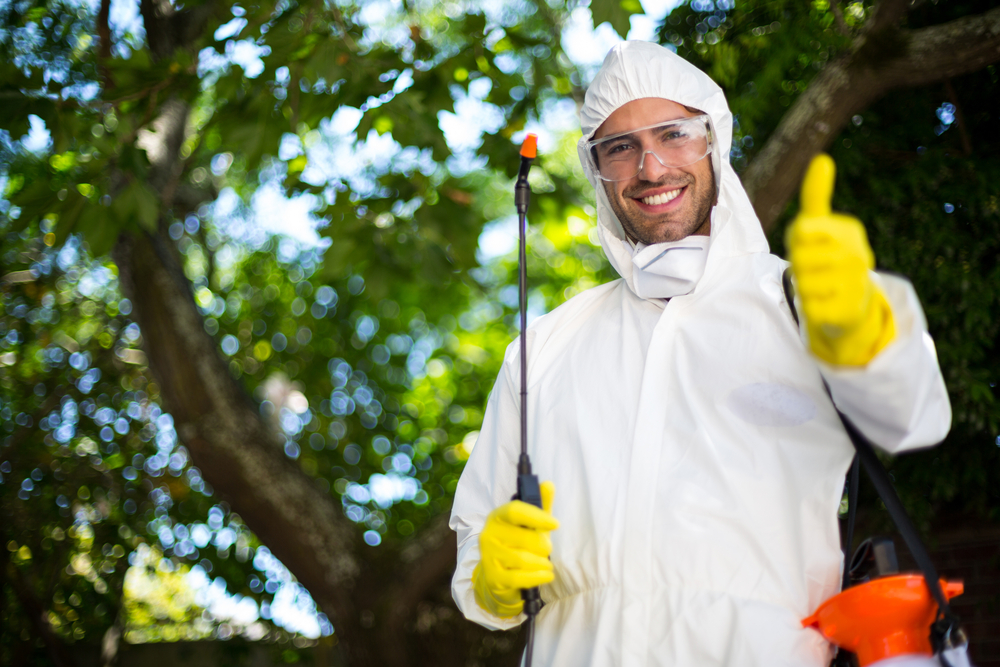 Keep Your Property Free of Pests